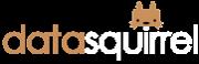 Datasquirrel Logo